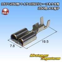 古河電工 187+250型 非防水 マイクロISOリレーコネクタ用 250型 メス端子