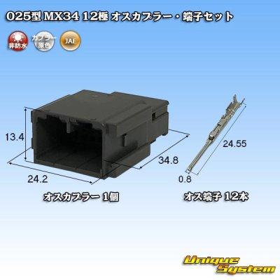 画像1: 日本航空電子JAE 025型 MX34 12極 オスカプラー・端子セット