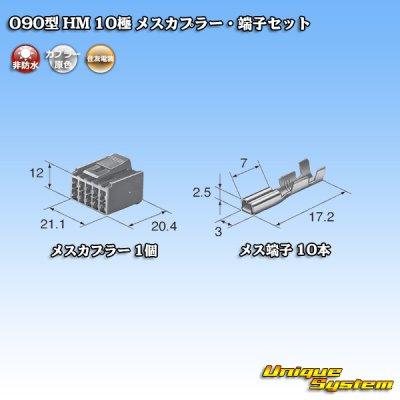 画像4: 住友電装 090型 HM 10極 メスカプラー・端子セット