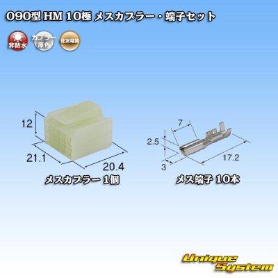 画像1: 住友電装 090型 HM 10極 メスカプラー・端子セット
