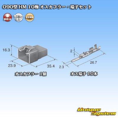 画像4: 住友電装 090型 HM 10極 オスカプラー・端子セット