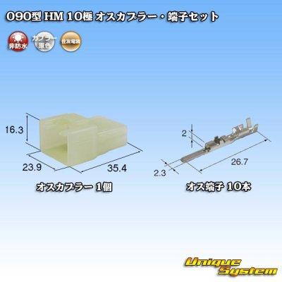 画像1: 住友電装 090型 HM 10極 オスカプラー・端子セット