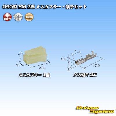 画像1: 住友電装 090型 HM 2極 メスカプラー・端子セット