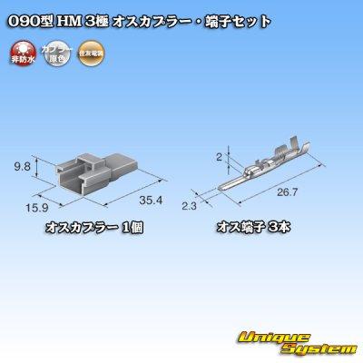 画像4: 住友電装 090型 HM 3極 オスカプラー・端子セット