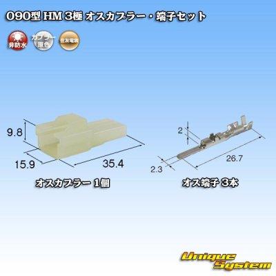 画像1: 住友電装 090型 HM 3極 オスカプラー・端子セット