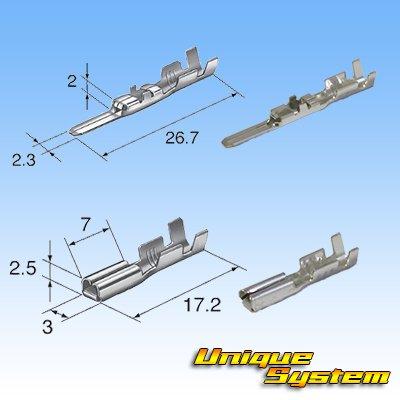 画像4: 住友電装 090型 HM 8極 カプラー・端子セット