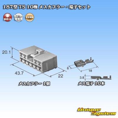 画像5: 住友電装 187型 TS 10極 メスカプラー・端子セット
