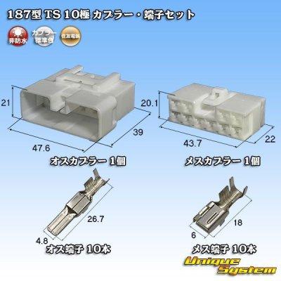 画像1: 住友電装 187型 TS 10極 カプラー・端子セット