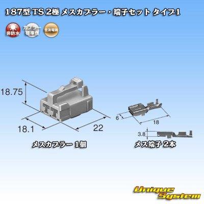 画像1: 住友電装 187型 TS 2極 メスカプラー・端子セット タイプ1