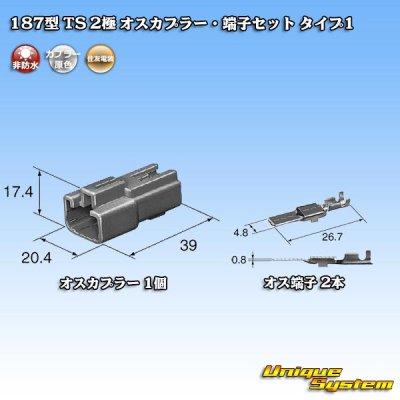画像1: 住友電装 187型 TS 2極 オスカプラー・端子セット タイプ1
