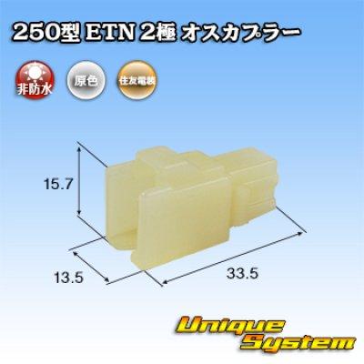 画像1: 住友電装 250型 ETN 非防水 2極 オスカプラー