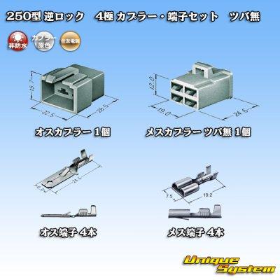 画像5: 住友電装 250型 逆ロック 非防水 ツバなし 4極 カプラー・端子セット