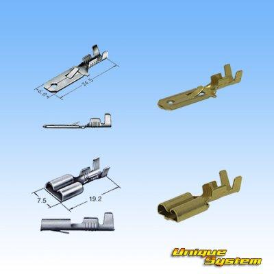 画像4: 住友電装 250型 逆ロック 非防水 ツバなし 4極 カプラー・端子セット
