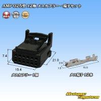 タイコエレクトロニクス AMP 025型I 12極 メスカプラー・端子セット 黒色