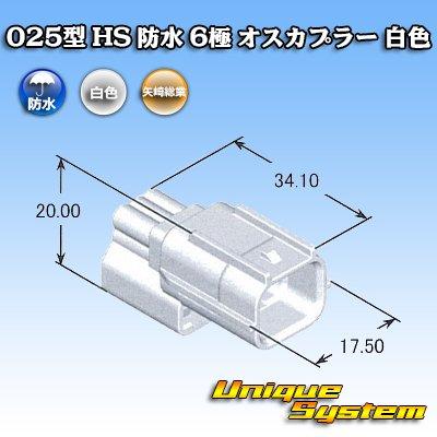 画像4: 矢崎総業 025型 HS 防水 6極 オスカプラー 白色