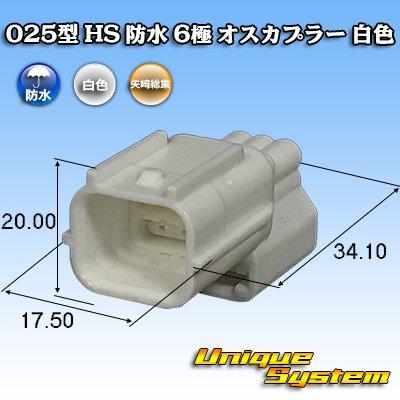 画像1: 矢崎総業 025型 HS 防水 6極 オスカプラー 白色