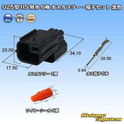 画像1: 矢崎総業 025型 HS 防水 6極 オスカプラー・端子セット 黒色
