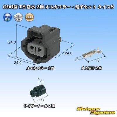 画像1: 住友電装 090型 TS 防水 2極 メスカプラー・端子セット タイプ6