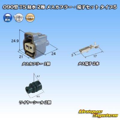 画像1: 住友電装 090型 TS 防水 2極 メスカプラー・端子セット タイプ5