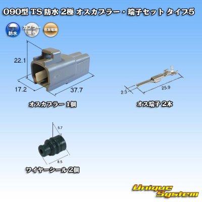 画像1: 住友電装 090型 TS 防水 2極 オスカプラー・端子セット タイプ5