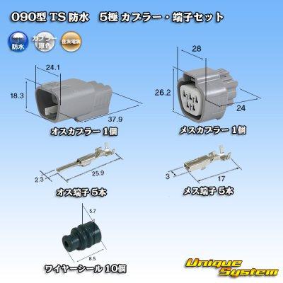 画像1: 住友電装 090型 TS 防水 5極 カプラー・端子セット