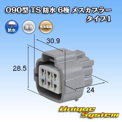 画像1: 住友電装 090型 TS 防水 6極 メスカプラー タイプ1