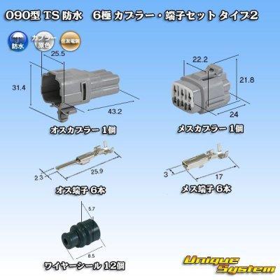 画像1: 住友電装 090型 TS 防水 6極 カプラー・端子セット タイプ2