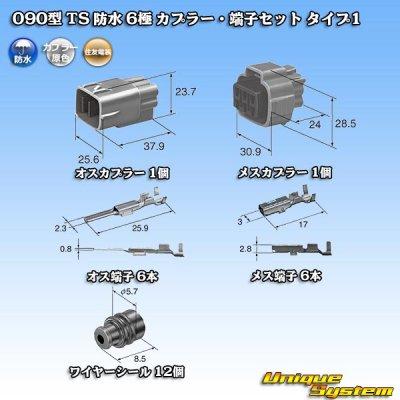 画像5: 住友電装 090型 TS 防水 6極 カプラー・端子セット タイプ1