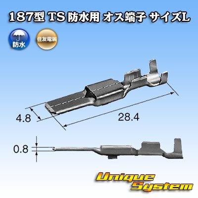 画像3: 住友電装 187型 TS 防水用 オス端子 サイズL