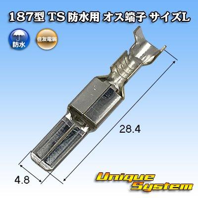 画像1: 住友電装 187型 TS 防水用 オス端子 サイズL