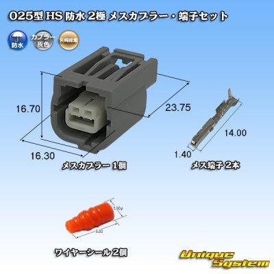 画像1: 矢崎総業 025型 HS 防水 2極 メスカプラー・端子セット