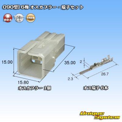 画像1: 矢崎総業090型I 6極 オスカプラー・端子セット タイプ1