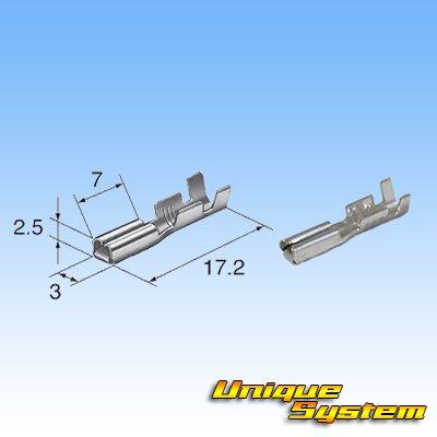 画像4: 矢崎総業 090型I 3極 メスカプラー・端子セット