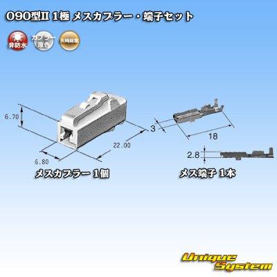 画像5: 矢崎総業 090型II 1極 メスカプラー・端子セット