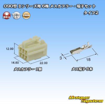 画像1: 矢崎総業 090型II 6極 メスカプラー・端子セット タイプ2