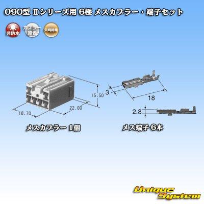 画像4: 矢崎総業 090型II 6極 メスカプラー・端子セット タイプ1