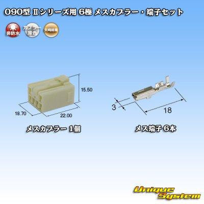 画像1: 矢崎総業 090型II 6極 メスカプラー・端子セット タイプ1