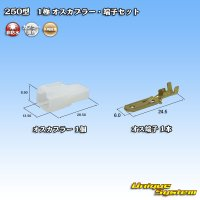 矢崎総業 250型 CN(A) 非防水 1極 オスカプラー・端子セット