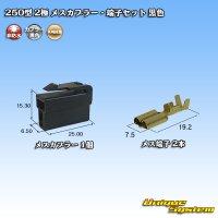 矢崎総業 250型 2極 メスカプラー・端子セット 黒色