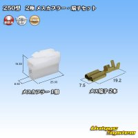 矢崎総業 250型 CN(A) 非防水 2極 メスカプラー・端子セット