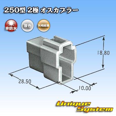 画像3: 矢崎総業 250型 CN(A) 非防水 2極 オスカプラー