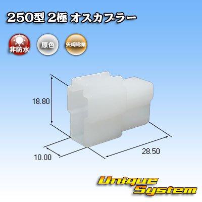 画像1: 矢崎総業 250型 CN(A) 非防水 2極 オスカプラー