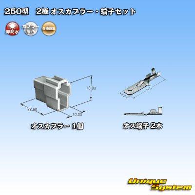 画像4: 矢崎総業 250型 CN(A) 非防水 2極 オスカプラー・端子セット