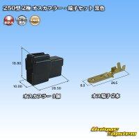 矢崎総業 250型 2極 オスカプラー・端子セット 黒色