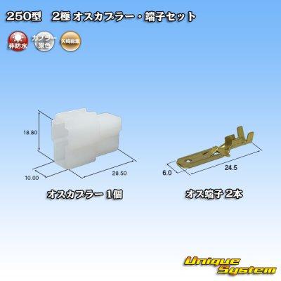 画像1: 矢崎総業 250型 CN(A) 非防水 2極 オスカプラー・端子セット