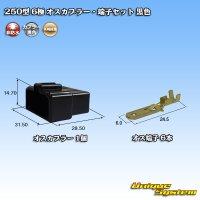 矢崎総業 250型 6極 オスカプラー・端子セット 黒色