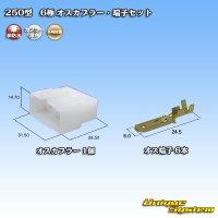 矢崎総業 250型 CN(A) 非防水 6極 オスカプラー・端子セット
