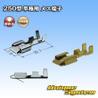 矢崎総業 250型 非防水 単極用 非防水 メス端子