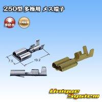矢崎総業 250型 多極用 メス端子