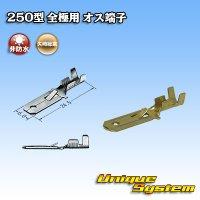 矢崎総業 250型 非防水 全極用 非防水 オス端子
